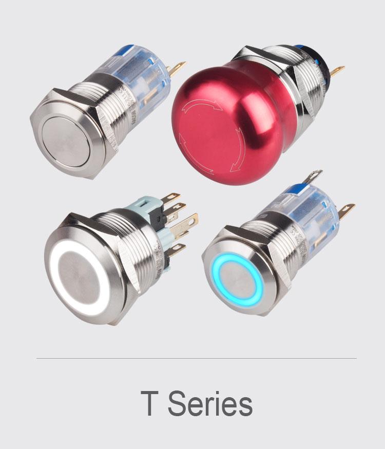 t-series1